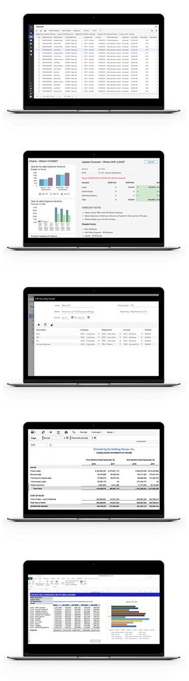 Planful data screens